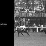 _iron-duke-coupe-de-maisons-laffite-1976-winner-small