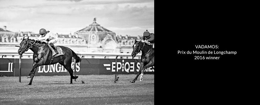 vadamos-prix-du-moulin-de-longchamp-2016-winner-small