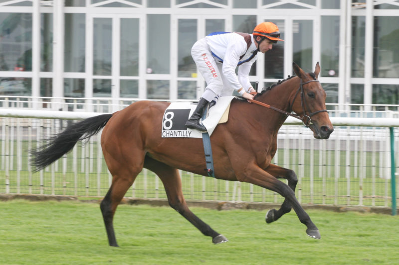 Plat © APRH - Chantilly - 29/04/2013 - 5ème Course - PRIX ALLEZ FRANCE (Groupe III) - 8. PEARLS OR PASSION, Bertras François-Xavier -