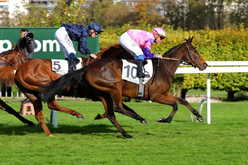 Saint-Cloud - 27/10/2018 - CRITERIUM DE SAINT-CLOUD (Gr 1) - WONDERMENT, Stéphane Pasquier -
